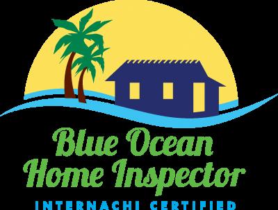 BlueOcean_Logo